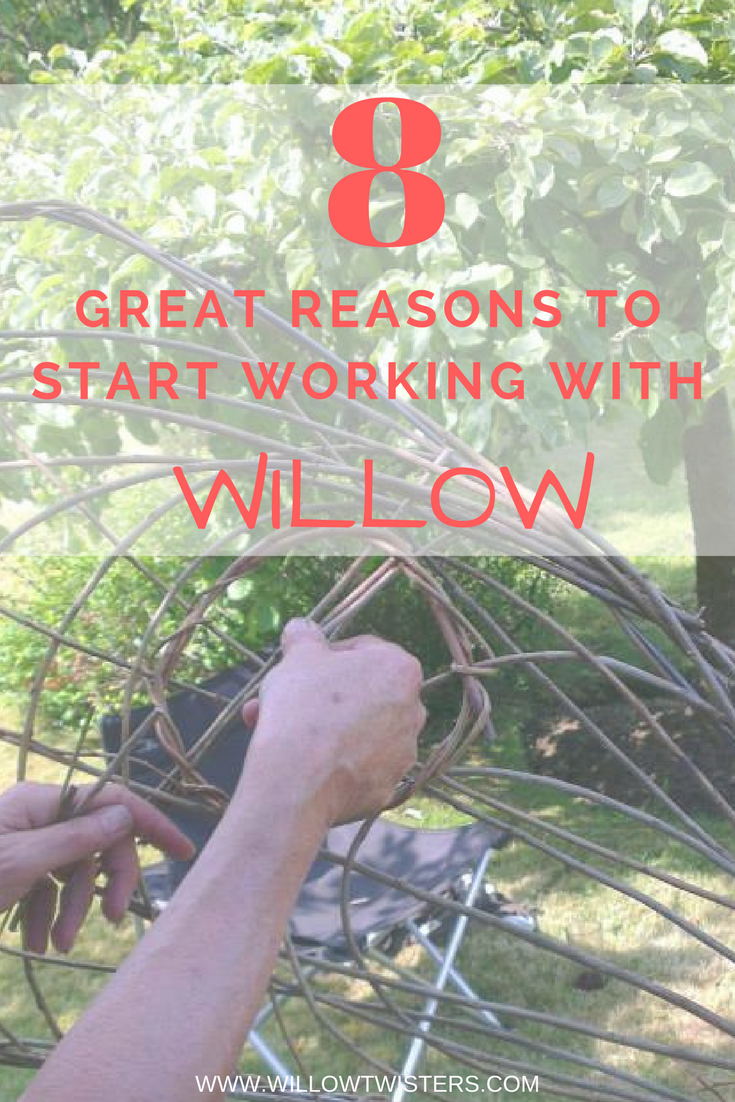 8 great reasons to start working with willow