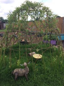 Living willow dome structure igloo